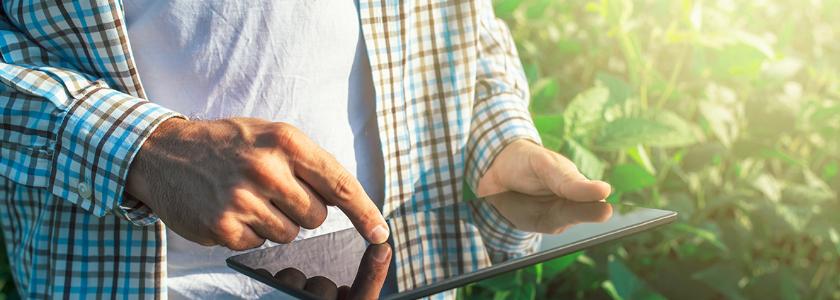 Садоводам предстоит проводить собрания и голосовать за принятие решений онлайн