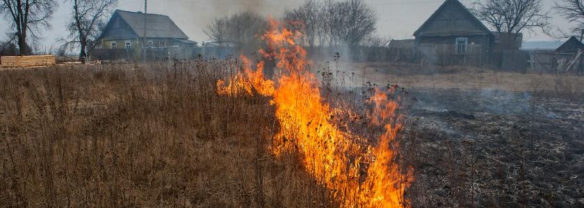 Государство будет отбирать участки за нарушение правил пожарной безопасности