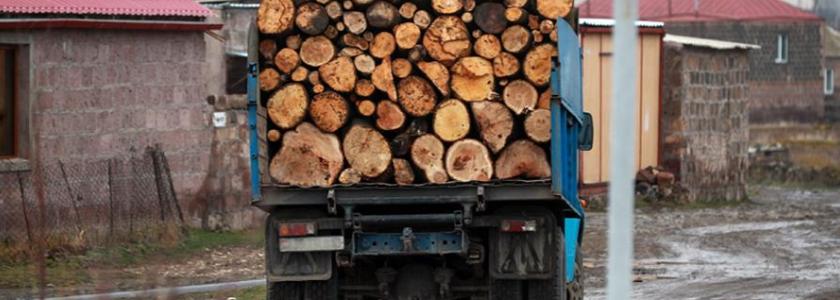 Теплая самоизоляция: на дачи пожилых москвичей доставляют дрова